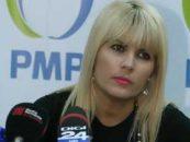 Elena Udrea (PMP): Dreapta ar trebui sa-l sustina pe Cristian Diaconescu drept candidat unic la prezidentiale