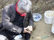 IICCMER: O noua acțiune de deshumare a unui partizan din Sângeorz Bși, ucis de Securitate