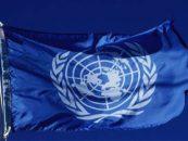 ONU cere o anchetă internationala în privinţa avionului prăbuşit în estul Ucrainei