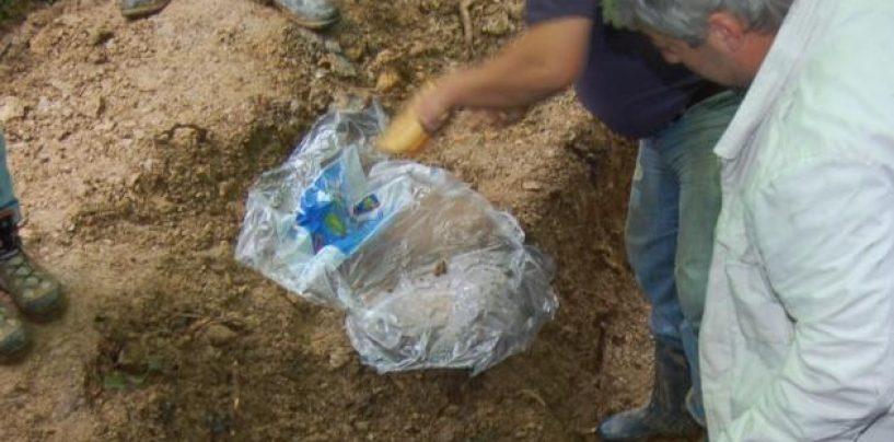 Noi cercetări arheologice pentru descoperirea cadavrelor fraților Șușman, împușcați de Securitate
