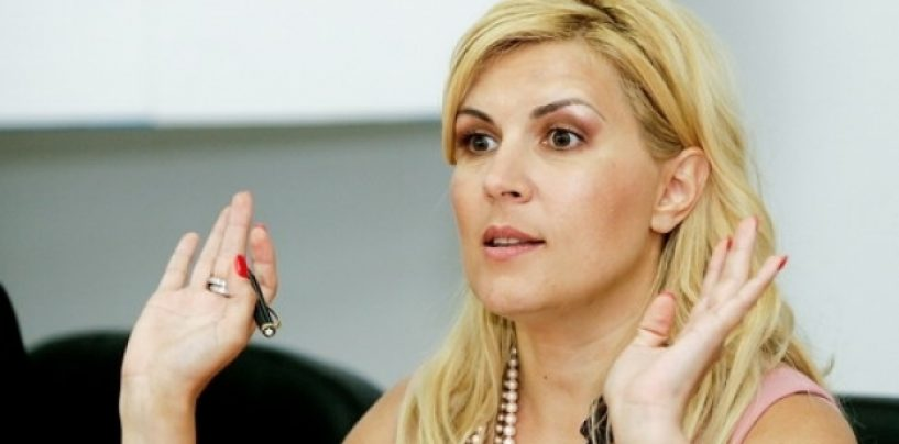 Elena Udrea: Sunt acuze fără argumente şi fără probe, despre lucruri cu care nu am nici o legătură