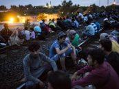 Stare de razboi. Tarile din Estul Europei mobilizeaza armata in fata crizei refugiatilor