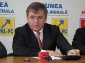 PSD Satu Mare il sustine pe Liviu Dragnea pentru functia de presedinte al partidului