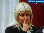Dezvaluirile Elenei Udrea: Unde au ajuns banii baietilor destepti din energie. De ce au fost inchise microfoanele in comisia juridica