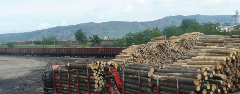 La ce concluzii a ajuns Ministerul Mediului in privinta firmei austriece Holzindustrie Schweighofer, sustinuta de Klaus Iohannis
