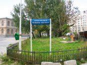 Jaful din banul public: Primariile din Bucuresti au cheltuit peste 600 milioane euro pentru taiat frunze la caini