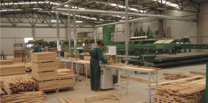Firmele austriece de prelucrare a lemnului, sub ancheta Consiliul Concurentei