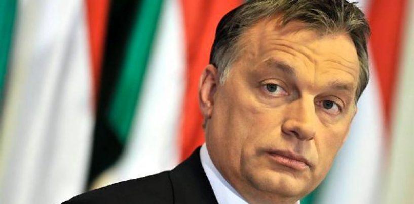 În România de ce nu se poate? Referendum, în Ungaria, pe tema cotelor de refugiaţi