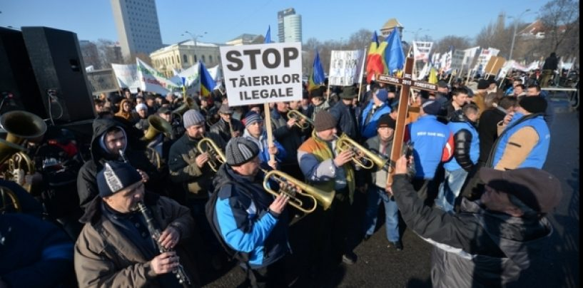 """Protest în faţa Palatului Victoria. Pădurarii au pus """"cruce"""" Guvernului"""