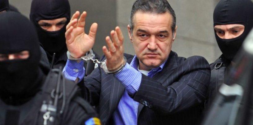 Din nou probleme cu justitia. Gigi Becali, acuzat de marturie mincinoasa in dosarul lui Gabriel Popoviciu