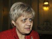 Senatorului Cristiana Anghel i-a căzut în cap un steag primit de la Ilie Năstase