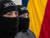 DIICOT spune că există 40 de dosare de terorism în România