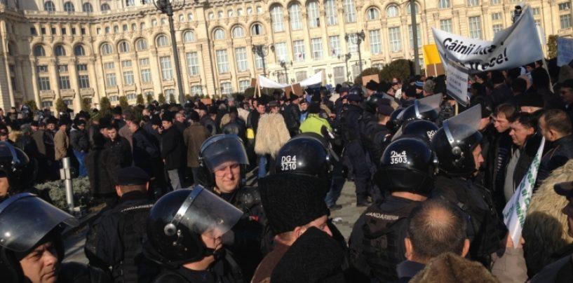 Incidente între fermieri şi jandarmi, la un protest în faţa Parlamentului