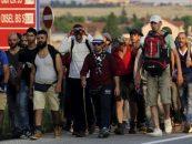 PRU susţine că se pregăteşte aducerea imigranţilor într-o fostă unitate militară la Vama Veche