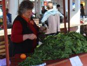Investitii masive in reabilitarea pietelor din Satu Mare