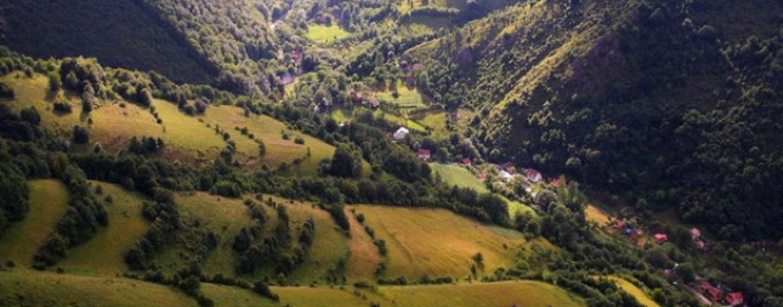 Cum au fost salvate mii de ha de pădure din mâinile grofilor maghiari în județul Mureș