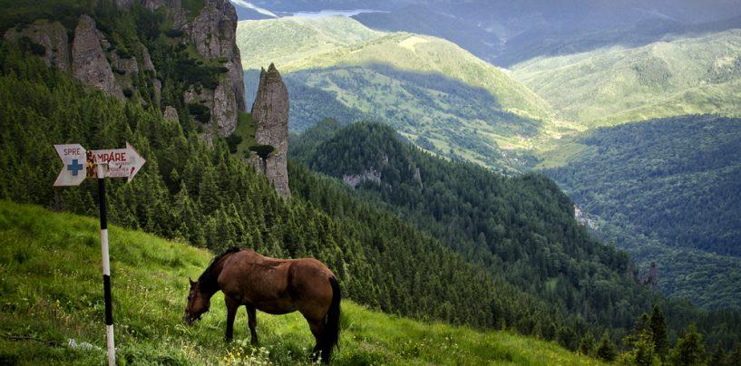 """Bată-i toaca! Studenții ortodocși din Cluj au provocat daune """"zgomotoase"""" în munții Ceahlău"""