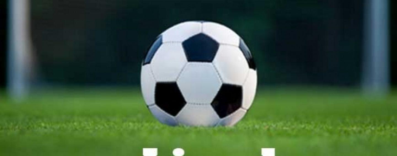 CS Universitatea Craiova, CFR Cluj și Dinamo s-au calificat în play-off