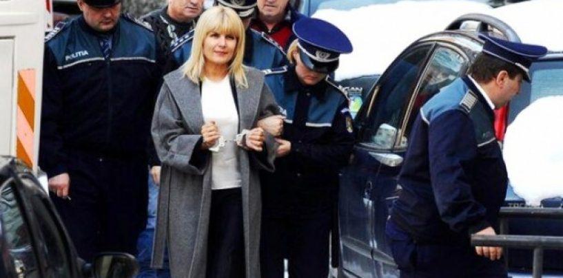 Elena Udrea, condamnată la 6 ani de pușcărie, în dosarul Bute. Rudel Obreja a luat 5 ani