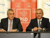 Comisie parlamentara pentru o posibila fraudare a alegerilor prezidentiale din 2009
