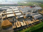 O victorie amara! Holzindustrie Schweighofer renunta sa mai defriseze padurile virgine din Romania