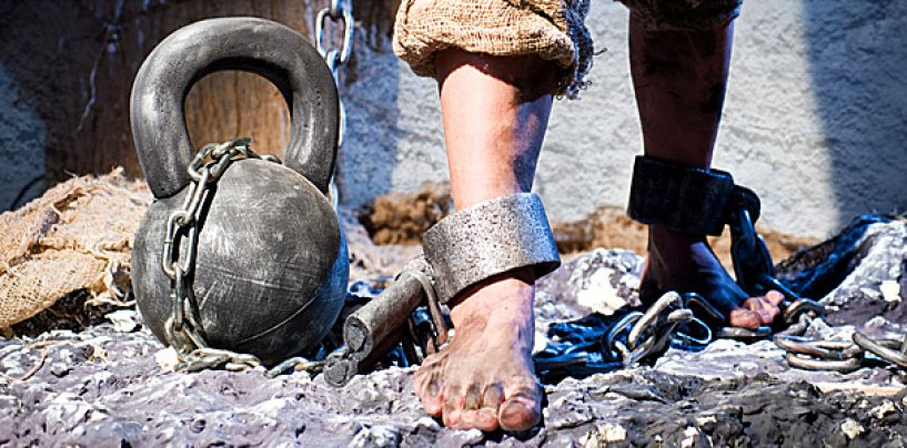 Sclavi în propria țară! Un patron străin către angajații români: Fuck off, animalelor!