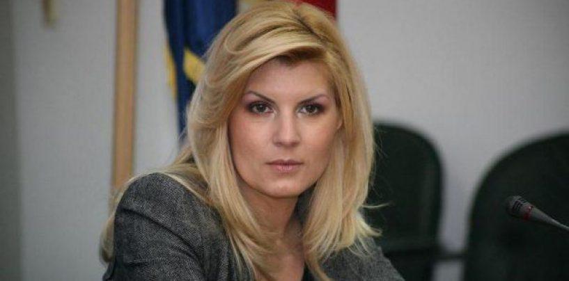Elena Udrea, la inceput de an: Mai lichelelor, ati uitat cand lingeati clanta sa va dau functii in partid?