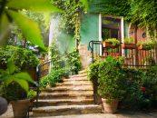 Cum amenajezi gradina? 4 pași simpli pe care îi poți face pentru ca grădina ta să arate ca in filme