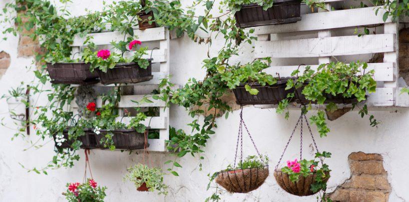 SECRETELE unei gradini amenajate perfect: sfaturi si trucuri pentru un decor de invidiat