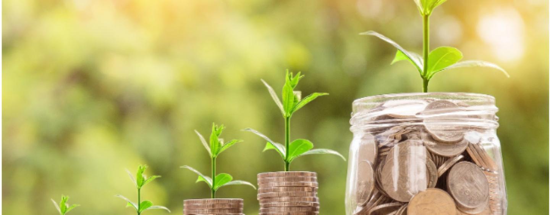 Nu esti multumita de planul financiar? Iata 5 modalitati prin care poti obtine mai multi bani intr-un timp scurt!