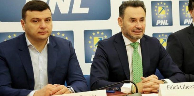 Umbra lui Falcă la Primăria Arad. Cum se fac jocurile în filiala PNL pentru alegerile locale