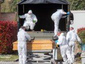 România își trimite cetățenii la muncă în centrul pandemiei de coronavirus din Italia