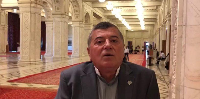 Terenuri gratis în zone protejate, la Bușteni. Cum s-a folosit Savin de legea pentru tineri în vederea satisfacerii propriei clientele