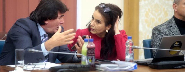 Găinării de partid. Cum folosește Robu  în scop electoral, Asociația Timișoara- Capitală Culturală Europeană