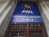 Dinulescu și Șandru, liberalii timișeni campioni ai contractelor cu statul. Ginerică Șandru, bani publici pe barba socrului