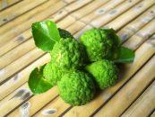 Bergamota, acest fruct picant puțin cunoscut, foarte apreciat în vremuri de pandemie