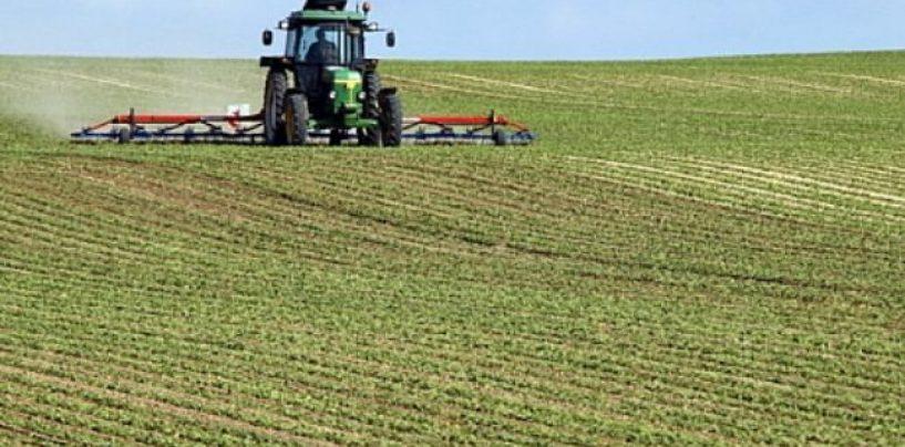 Războiul terenurilor agricole.  Cum este blocat un fermier din județul Arad să-și ridice subvențiile de pe terenurile sale