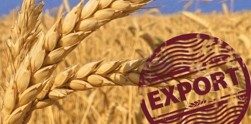 """Din """"afacerile"""" românilor. Exportăm grâu și importăm pâine"""